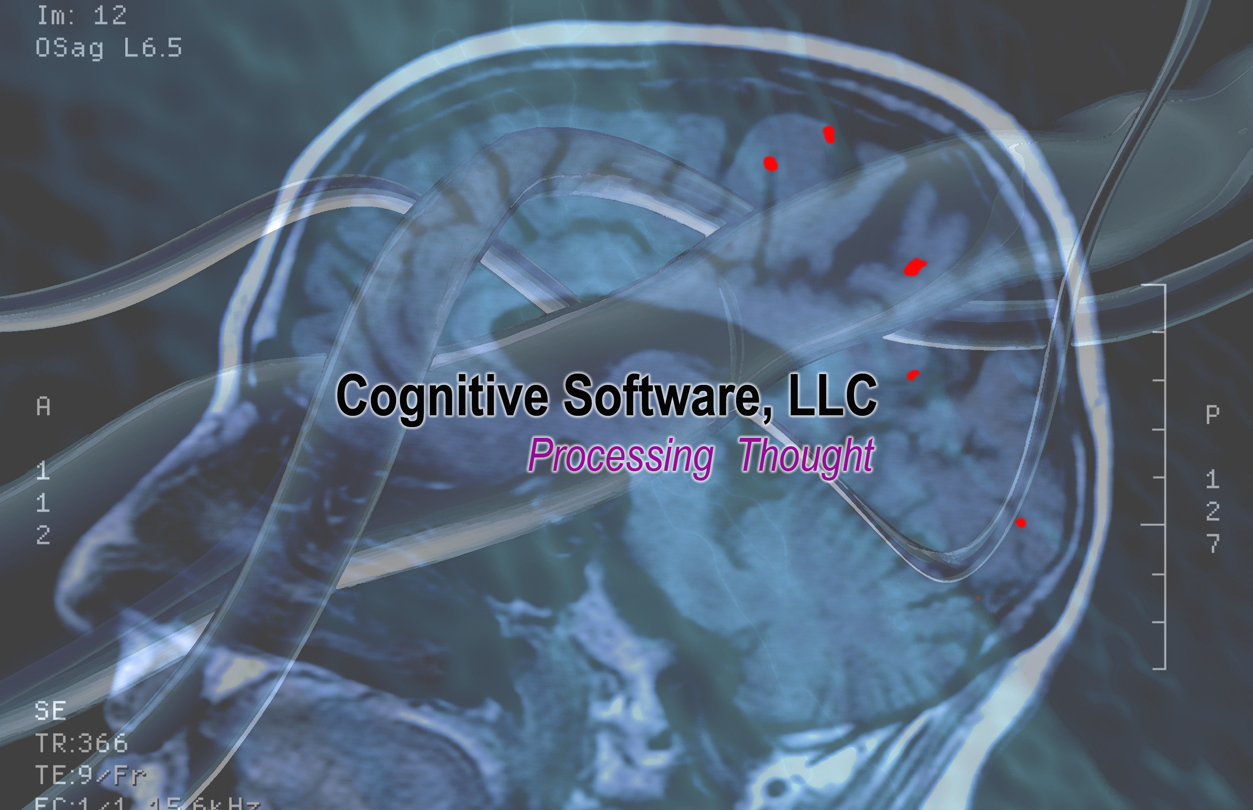 cognitive_software_logo.jpg